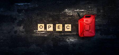 BofA: oil may reach $100 a barrel next year